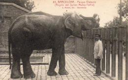ESPAGNE  BARCELONE  Parque Elefante ( Regalo Del Sultan Muley- Haffid )   ..... - Barcelona