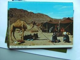 Israël Beduin Neir Their Tent - Israël