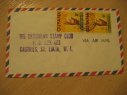 ESSEQUIBO 1972 To Castries St. Lucia W.I. Arts Festival 2 Stamps Cancel Air Mail Cover GUYANA British Area - Guyane (1966-...)