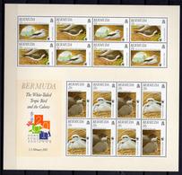 2001 - BERMUDA - Catg.. Mi. 785/788 - NH - (UP.207.18) - Bermuda