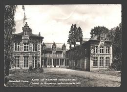 Wezembeek-Oppem - Kasteel Van Wezembeek - Wezembeek-Oppem