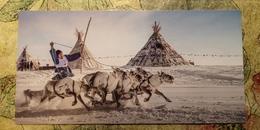 SALEKHARD, Yamalo-Nenets Autonomous Okrug, Russia - Reindeer Day Regional Games - Modern Postcard - Jeux Régionaux