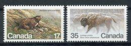 Canada, 1981, Nature, Animals, Bison, Marmot, MNH, Michel 794-795 - Non Classés