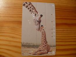 Phonecard Japan 231-228 Giraffe - Japan