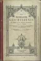 BIJBELSCHE GESCHIEDENIS - DES OUDEN EN DES NIEUWEN TESTAMENTS - UITGAVE HERDER 1920 - Boeken, Tijdschriften, Stripverhalen