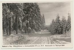 AK  Neuhaus Am Rennweg Winter Wald - Neuhaus