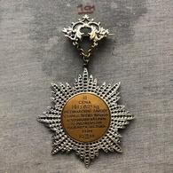 Badge Pin ZN007919 - Wrestling Weightlifting Czechoslovakia Zlin International Tournament 1928-12-16 2nd Place - Lotta