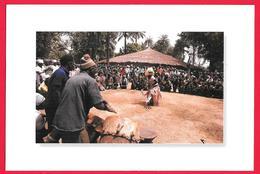 SENEGAL CASAMANCE FETE AU VILLAGE - PHOTO M. RENAUDEAU - Senegal