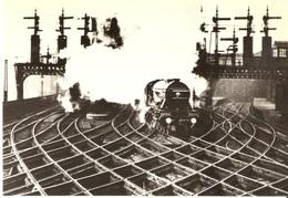 NEWCASTLE - Central Station Ca. 1930 (Reproduktion) - Bahnhöfe Mit Zügen