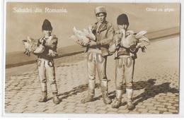 Salutari Din Romania : Olteni Cu Gaste - Roumanie