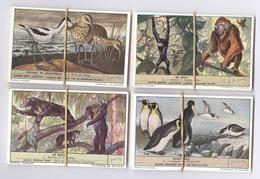 Lot De 60 Chromos Liebig D'animaux En Néerlandais - Dieren In Het Wild - Etat Neuf - Liebig