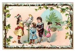Enfants  Oiseau  Perroquet Ara  Cerceau, Superbe Chromo ( Carton )   10x14cm   Dos Neutre. - Non Classés