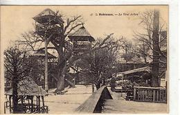 92 - ROBINSON -  Le Vrai Arbre - - France