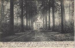 Brugelette.    Grotte Blanche   -   1903   Naar   Mons - Brugelette
