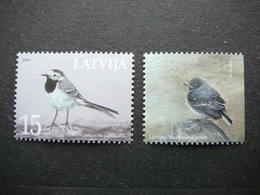 National Birds. White Wagtail # Latvia Lettland Lettonie # 2003 MNH # Mi. 596 - Lettonie