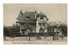 Cpa COLMAR Gruss Vom FORSTHAUS NEULAND Weniger Maison Forestière - Colmar