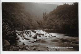 The Weir - Drewsteignton - Chapman 10108 - Other