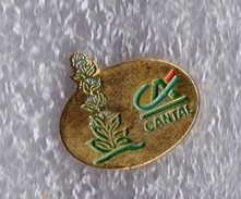 PIN S CREDIT AGRICOLE CANTAL ( GENTIANE ) - Banques