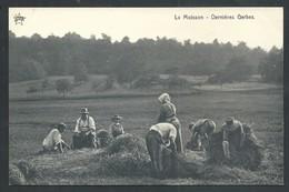 +++ CPA - Ferme - Agriculture - Culture - La Moisson - Dernières Gerbes - Métier    // - Cultures