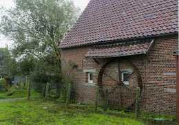 BEVER - Biévène (Vlaams-Brabant) - Molen/moulin - Prentkaart Van De Hondenmolen (karnmolen) In Buurtschap Romont - Bever