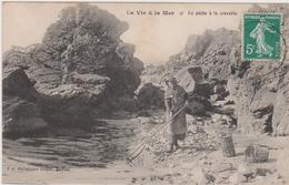 La Vie A La Mer - France