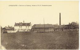LANDSCOUTER - Distillerie Du Betsberg - Fendée En 1773 - A. Vandevelde-Laenens - Oosterzele