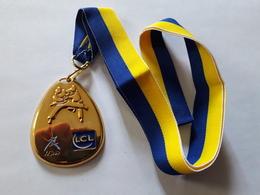 Médaille Fédération Française De Judo. LCL. - Sports De Combat