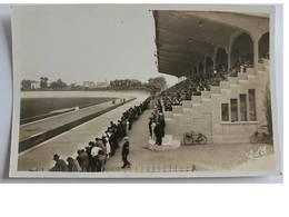 CPSM De VICHY - Les Tribunes Du Stade - Vichy