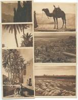 LOT DE 6 CPA ALGER ALGERIE / PRIERE DU DESERT / TERRASE CASBAH / GRANDE PRIERE / CIMETIERE EL KETTAR / PALMERAIE / OASIS - Alger