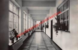 Schoolvilla Madonna - Gang Voor De Klassen - Vlimmeren - Beerse