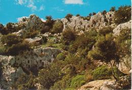 PANTALICA - NECROPOLI PREISTORICA SEC. XII-XIII A.C. - Autres Villes