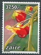 Impatiens Niamniamensis (Fleur) - Zaïre - 1984 - Zaïre