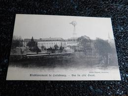 établissement De Carlsbourg, Vue Du Côté Ouest, Non Circulée   (V6) - Paliseul