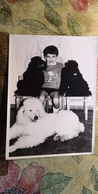 Petit Garçon - Young Little Boy With A Dog  - Vintage Photography 1970s  Old USSR Photo - Poodle - Personnes Anonymes