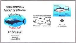 Fauna Marina En Peligro De Extincion: ATUN ROJO - BLUEFIN TUNA. SPD/FDC Madrid 2013 - Protección Del Medio Ambiente Y Del Clima