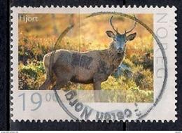 Norway 2014 - Wildlife In Norway - Noruega