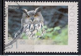 Norway 2015 - Wildlife In Norway - Eurasian Eagle-Owl - Noruega