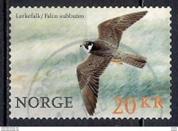 Norway 2017 - Birds Of Prey - Noruega