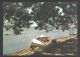 Egypt - View Of The Nile - Boat / Bateau - Egypte