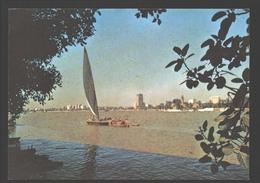 Egypt - The River Nile - Boat / Bateau - Voilier / Zeilboot / Sailing Boat - Egypte