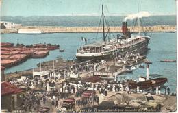 POSTAL    ALGERIE (ARGELIA)  AFRICA  - TRANSALLANTIQUE ACCOSTE AU PONTON - Argelia
