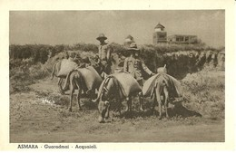 "2227 "" ASMARA - GUARADMAI - ACQUAIOLI "" CARTOLINA POSTALE ANIMATA ORIGINALE NON SPEDITA - Eritrea"