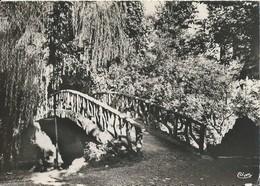 ALBERT  Jardin Public Le Pont - Albert