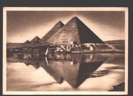 Flood Time Near The Pyramids - 1963 - Briefmark 'Towards A World Freed From Hunger' - Pyramides
