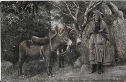 LE CENTRE DE  LA FRANCE :La Poste Aux Anes Pour L'Ascension Du Puy De Dôme (1907) - France