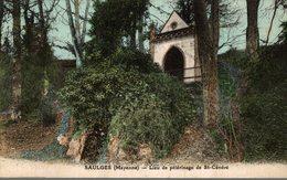53 SAULGES  LIEU DE PELERINAGE DE SAINT-CENERE - France