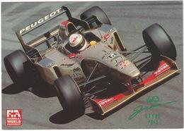 JORDAN Grand Prix - MARTIN BRUNDLE - PEUGEOT TOTAL  1996 - FIA Formula 1 World Championship - Grand Prix / F1