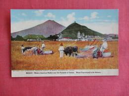 Internation Harvester Co. Modern America Builder Near The Pyramids Of Cholua  Mexico  Ref 3142 - Mexico