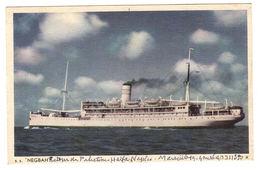 """PAQUEBOT - """"NEGBAH"""", ZIM ISRAEL NAVIGATION CO. LTD. (retour De Palestine Haifa Naples Marseille) - Steamers"""