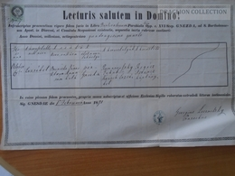 ZA174.1 Old Document -  Gnézda,  Hniezdne, Gňazda, Kniesen - 1871 - Romanovski - Klein - Brinczko - Lesznitzky - Naissance & Baptême
